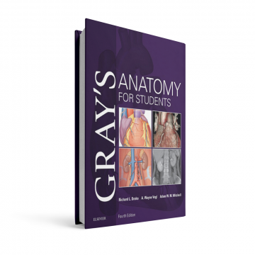 GRAY'S-ANATOMY